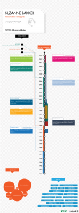 LinkedIn CV as infographic, via https://create.visual.ly/kelly