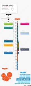 LinkedIn CV as infographic, via https://create.visual.ly/kelly
